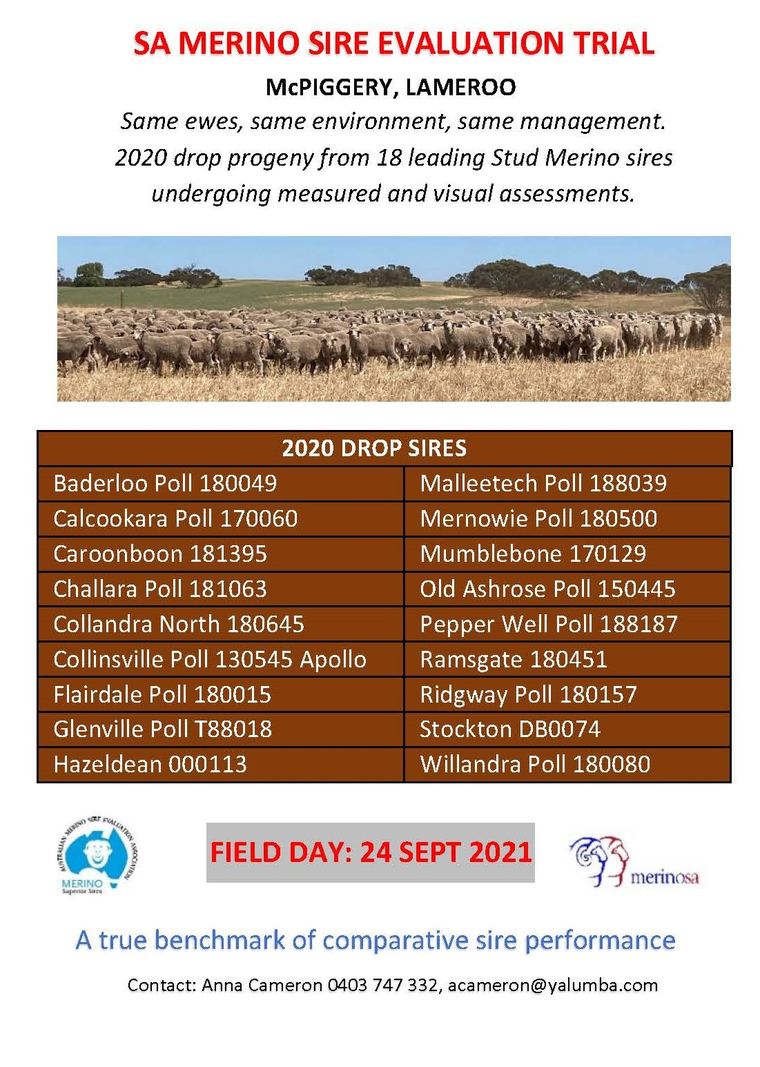 2021 SA Sire Evaluation Field Day